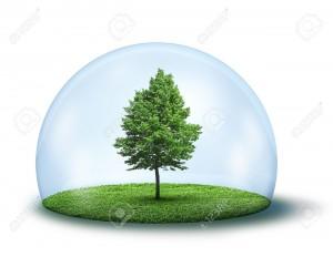 13330594-Albero-verde-e-di-erba-in-cupola-di-vetro-concetto-di-ambiente-Archivio-Fotografico